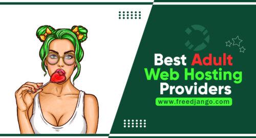 Best Adult Web Hosting Providers